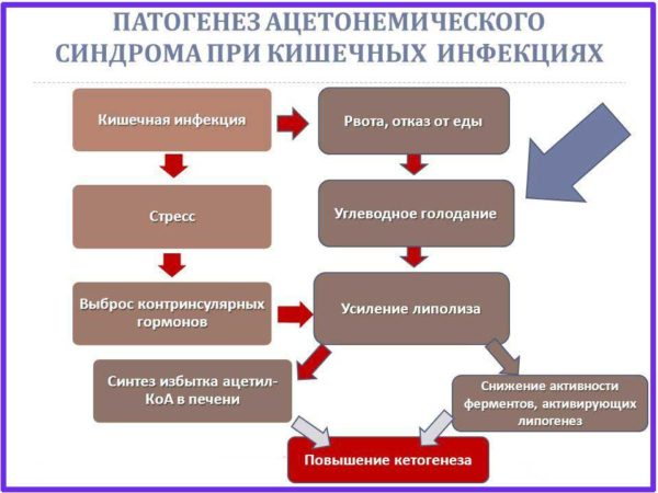 Ацетонемический синдром у детей, причины, симптомы, способы лечения